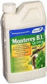 eradicating pantry moths using the bacillus thuringiensis insecticide